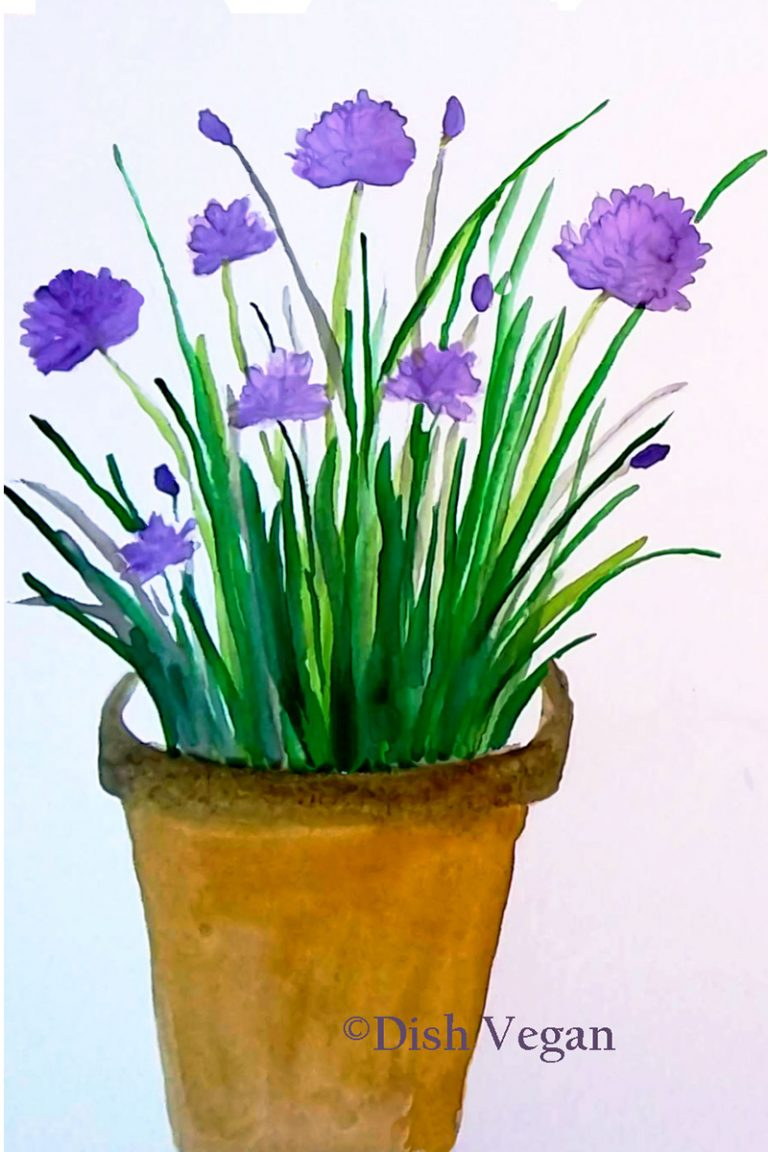 Watercolor painting of Chives (c)2019 Dish Vegan