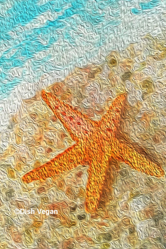 Dish Vegan painted Seashell at the Seashore